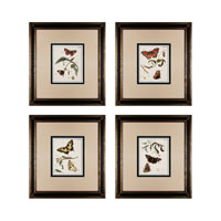 Sterling Industries Butterfly Metamorphisis Set of 4 Wall Art 10034-S4