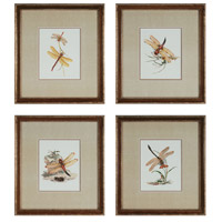 Sterling Industries Dragonflies Set of 4 Wall Art 10035-S4 photo thumbnail