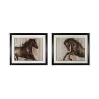 Sterling Dynamic Stallion I and II Framed Art 10203-S2
