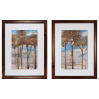 Sterling Near Dusk I & Near Dusk II Framed Art 10228-S2