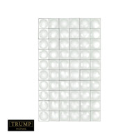 Trump Home 40 X 24 inch Clear Mirror Home Decor