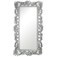 Reede 72 X 40 inch Clear Wall Mirror Home Decor