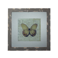 Sterling Industries Distressed Grey Picture Frame With Butterfly Print Decorative Accessory in Galloway Grey 128-1028