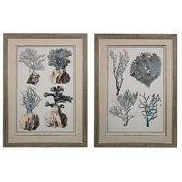 Sterling Set of 2 Coral Species Framed Art in Washed Wood 151-008/S2