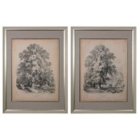 Sterling Set of 2 The Elm and the Sycamore Framed Art in Silver 151-011/S2
