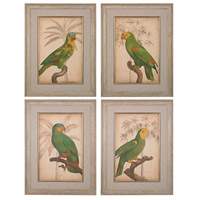 Sterling Set of 4 Parrot and Palm Framed Art in Washed Wood 151-018/S4