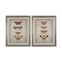 Cartouche and Butterflies Washed Wood Framed Art