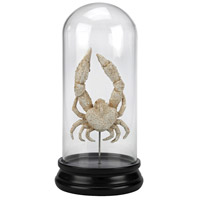 Sterling 2182-010 Naturae Aged White Curio, Ancient Crab