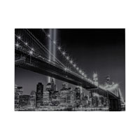 Sterling Williamsburg Bridge Wall Decor in Black And White 51-10123