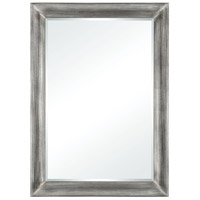 Chevalier 42 X 30 inch Antique Silver Wall Mirror