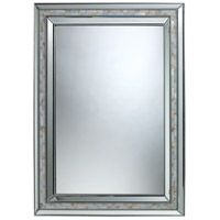 Sardis 39 X 29 inch Brushed Steel and Mother of Pearl Shell Mirror Home Decor