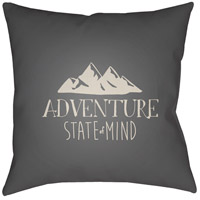 Adventure Iii 20 X 20 inch Grey and Beige Outdoor Throw Pillow