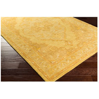 Surya AWHR2059-58 Middleton 96 X 60 inch Mustard/Tan/Camel Rugs, Rectangle alternative photo thumbnail