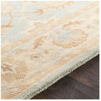 Surya AWMD2114-46 Middleton 72 X 48 inch Sea Foam Indoor Area Rug, Rectangle alternative photo thumbnail