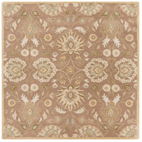 Caesar 72 X 72 inch Neutral and Brown Area Rug, Wool