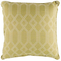Crissy 20 X 20 inch Green and White Outdoor Pillow Cover