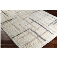 Surya FAF1001-23 Fanfare 36 X 24 inch Neutral and Neutral Area Rug, Polyester and Polypropylene alternative photo thumbnail