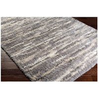 Surya FAF1002-23 Fanfare 36 X 24 inch Gray and Brown Area Rug, Polyester and Polypropylene alternative photo thumbnail
