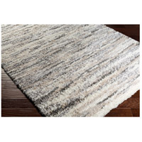 Surya FAF1003-23 Fanfare 36 X 24 inch Gray and Neutral Area Rug, Polyester and Polypropylene alternative photo thumbnail