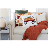 Surya FHI006-1818P Fall Harvest White and Red Holiday Throw Pillow alternative photo thumbnail