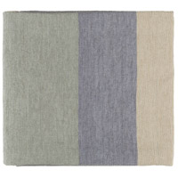 Meadowlark 70 X 50 inch Blue and Grey Throw