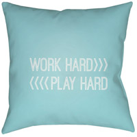 Work Play 20 X 20 inch Blue and White Outdoor Throw Pillow