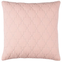 Reda 20 X 20 inch Pink and Grey Pillow Cover
