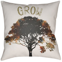 Signa 18 X 18 inch Outdoor Throw Pillow