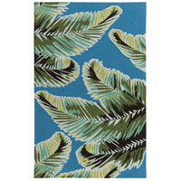 Surya SKE4014-576 Skye 90 X 60 inch Blue and Green Outdoor Area Rug, Polypropylene