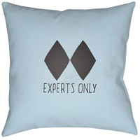 Black Diamond 20 X 20 inch Blue and Black Outdoor Throw Pillow