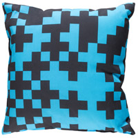 Scandanavian 18 X 18 inch Sky Blue and Black Outdoor Throw Pillow