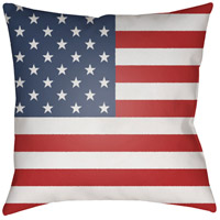 Americana 20 X 20 inch Red and Blue Outdoor Throw Pillow