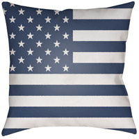 Americana 20 X 20 inch Blue and White Outdoor Throw Pillow