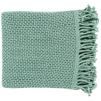 Tibey 70 X 50 inch Blue Throw