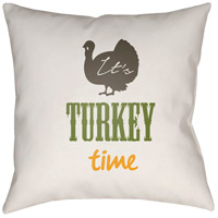 Its Turkey Time 20 X 20 inch White and Brown Outdoor Throw Pillow