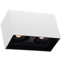 Exo LED 5 inch Matte White with Black Flushmount Ceiling Light, Dual