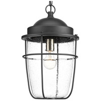 TrulyCoastal 30282-BCSI Flatts 1 Light 11 inch Textured Black Outdoor Hanging Lantern