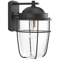 TrulyCoastal 30290-BCSI Flatts 1 Light 16 inch Black Outdoor Wall Lantern