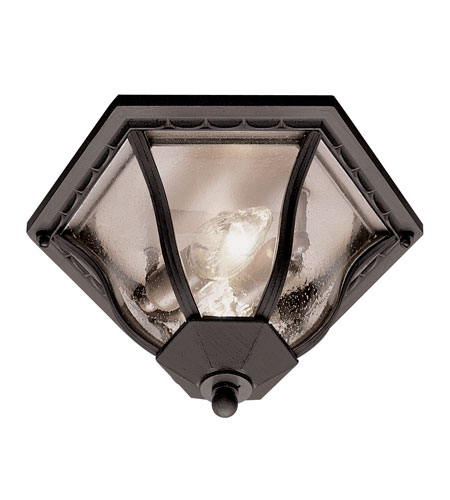 Trans Globe Lighting 4559-BK Worland 2 Light 13 inch Black Flush Mount Ceiling Light photo