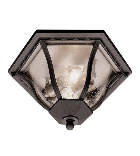 Trans Globe Lighting The Standard 2 Light Outdoor Flush Mount in Black 4559-BK photo