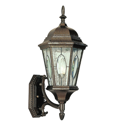 Trans Globe Lighting 4715-BRZ Watered Windows 1 Light 21 inch Brown Outdoor Wall Lantern photo