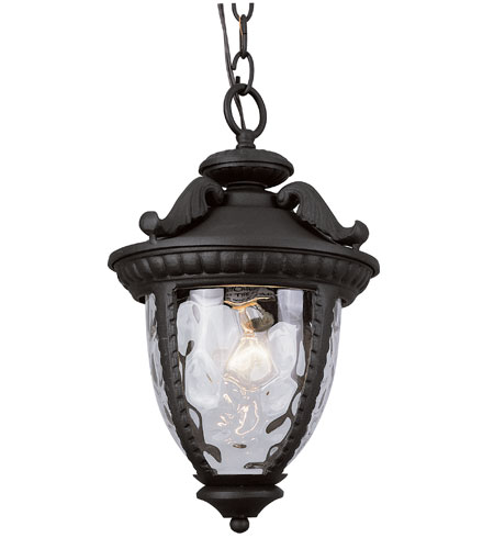 Trans Globe Lighting Villa 1 Light Outdoor Hanging Lantern in Black 5273-BK photo