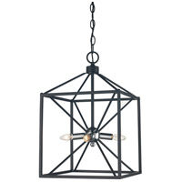 Donovan 4 Light 12 inch Polished Chrome and Black Pendant Ceiling Light