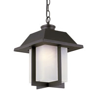 Trans Globe Pagoda Cap 1 Light Outdoor Pendant in Black 40114-BK