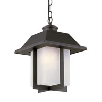 Pagoda 1 Light 10 inch Black Outdoor Pendant