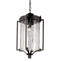 Coastal Sea 1 Light 11 inch Black Outdoor Hanging Lantern