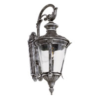 Trans Globe Lighting Imperial Leaf 1 Light Outdoor Wall Light in Swedish Iron 40160-SWI