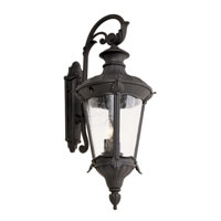 Trans Globe Imperial Leaf 2 Light Outdoor Wall Lantern in Black 40162-BK