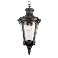 Trans Globe Imperial Leaf 1 Light Outdoor Hanging Lantern in Black 40164-BK