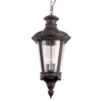 Trans Globe Imperial Leaf 2 Light Outdoor Hanging Lantern in Black 40166-BK